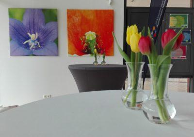Bilder für mehr Achtsamkeit im Rathaus Bordesholm